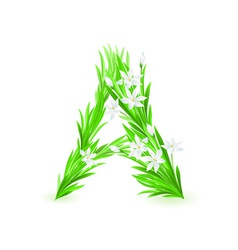 spring flowers alphabet a vector image