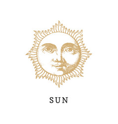 sun hand drawn in engraving style vector image