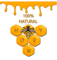 Sweet natural product vector