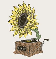 Vintage phonograph with sunflower vector