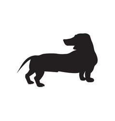 dog black icon vector image
