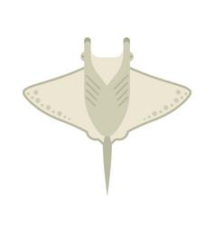 manta ray or stingray vector image