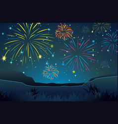 night scene with fireworks in sky vector image vector image