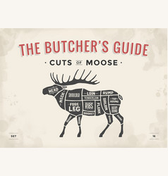 butcher diagram scheme - moose vector image