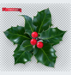 Holly traditional christmas decoration 3d vector