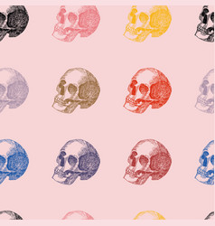 multicolor hand drawn skull seamless pattern pink vector image