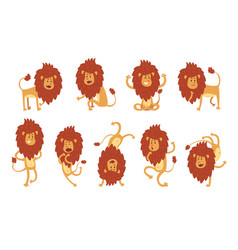 Collection lion in various poses cartoon vector
