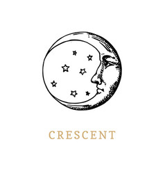 crescent hand drawn in engraving style vector image