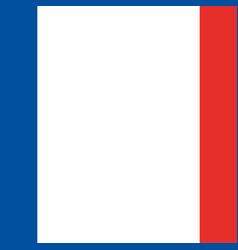 French flag emblem vector