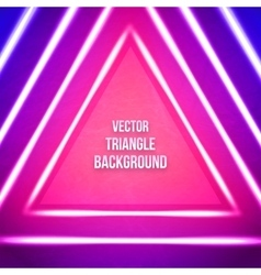 Geometric Background With Triangle Hipster vector image