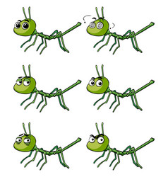 stick insect with different emotions vector image