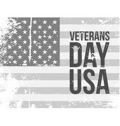veterans day usa grunge flag with text vector image