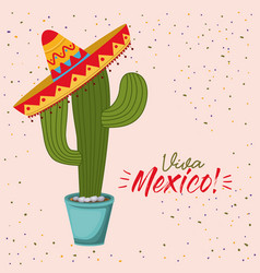 Viva mexico colorful poster of cactus plant with vector