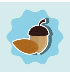 nuts and peanuts isolated icon design vector image