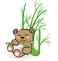 cute bear in bamboo forest 02 vector image