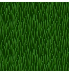 Green grass field seamless background vector