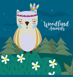 owl woodland animals vector image
