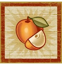 Retro apple vector image