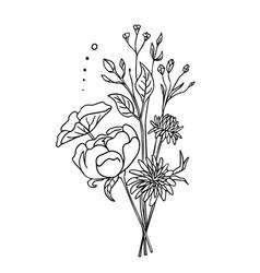white flowers isolated on a white background boho vector image