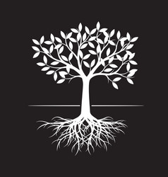White tree with root on black background vector