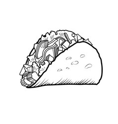 sketch hand drawn of taco vector image vector image