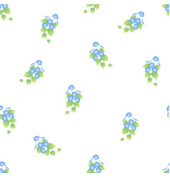 Blue morning glory seamless on white background vector