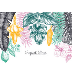 Botanical summer design frame with tropical vector