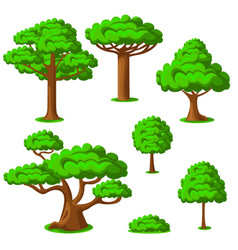 cartoon trees set on a white background vector image