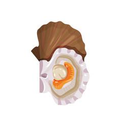 Detailed flat icon of open scallop edible vector