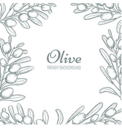 olive branch wreath border with empty space for vector image