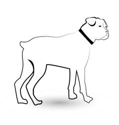 Rottweiler pet dog icon vector