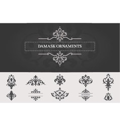 Set of Damask Ornaments II vector image