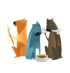 Dogs Eating Different Types of Food vector image