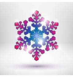 Abstract Christmas snowflake vector image