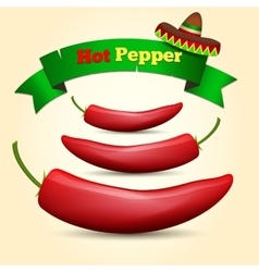 Hot Chile pepper vector image vector image