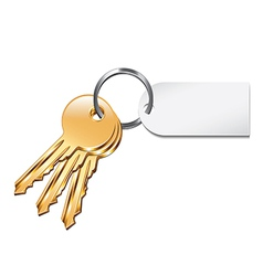 keys with tag isolated vector image vector image