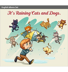 An idiom showing a rain with animals vector