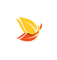 Beautiful yellow orange butterfly logo symbol icon vector