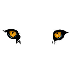 Big eyes yellow eyes a lion close up vector
