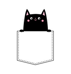 cute black cat in pocket pink cheeks holding vector image