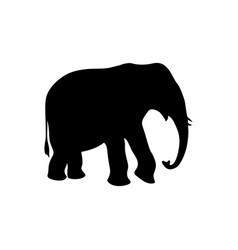 Elephant black icon vector