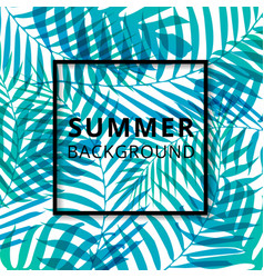 palm leave pattern summer background vector image