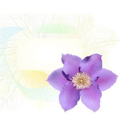 Postcard with clematis flower vector