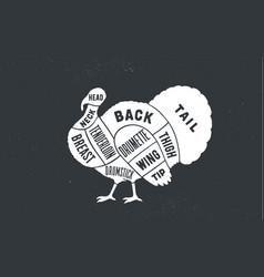 turkey butcher guide scheme vector image