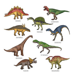 Colored of different dinosaurs types vector
