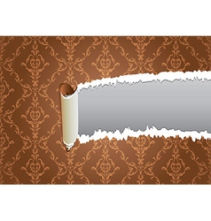 Torn wallpaper frame vector image vector image