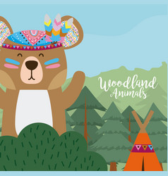 bear woodland animals vector image