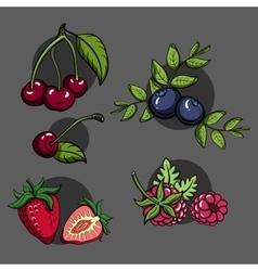 BerriesSet2 vector image