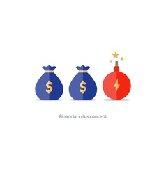 Financial risks prize fund money icon dangerous vector