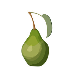 green pear on white background vector image